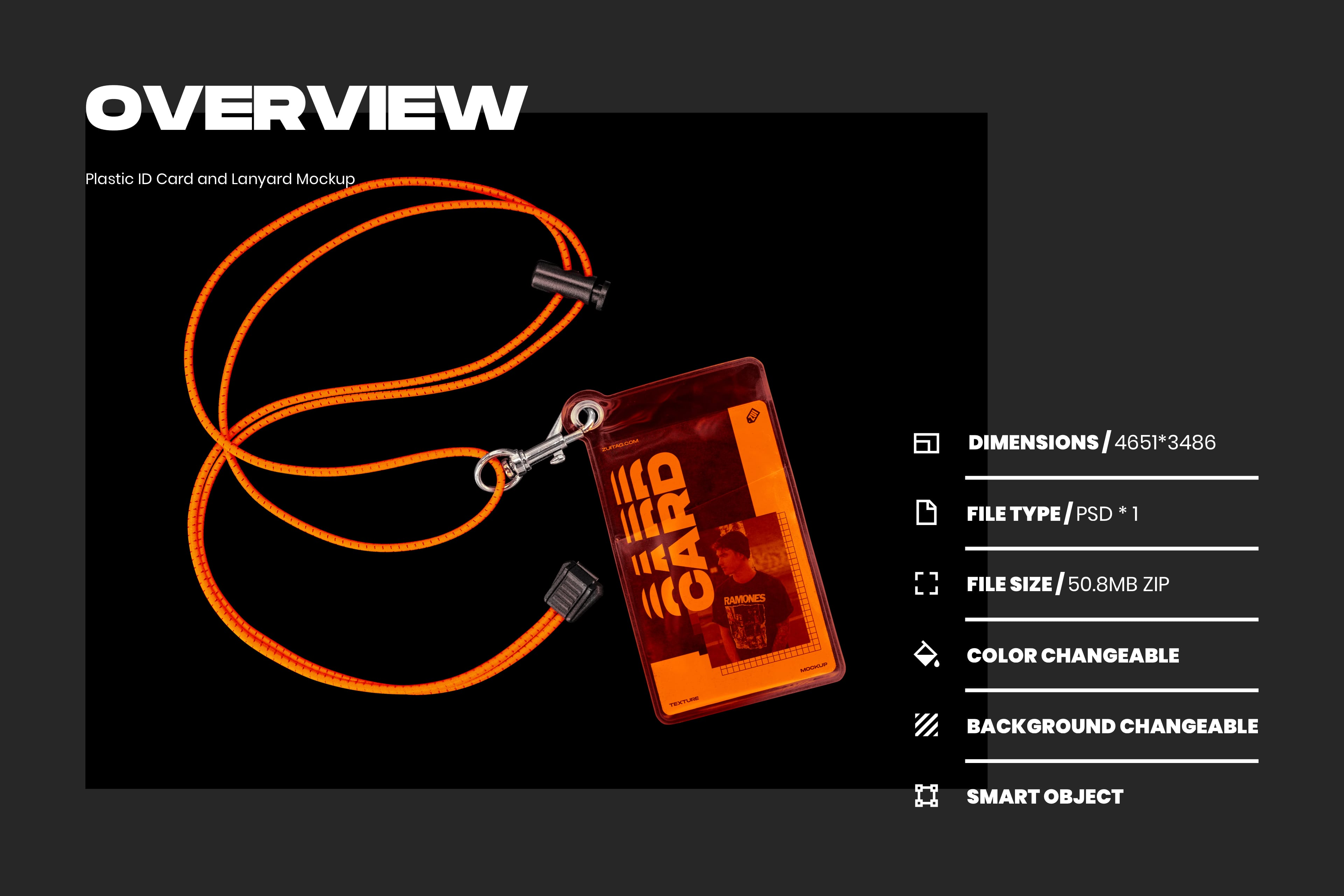 Plastic ID Card and Lanyard Mockup - Overview